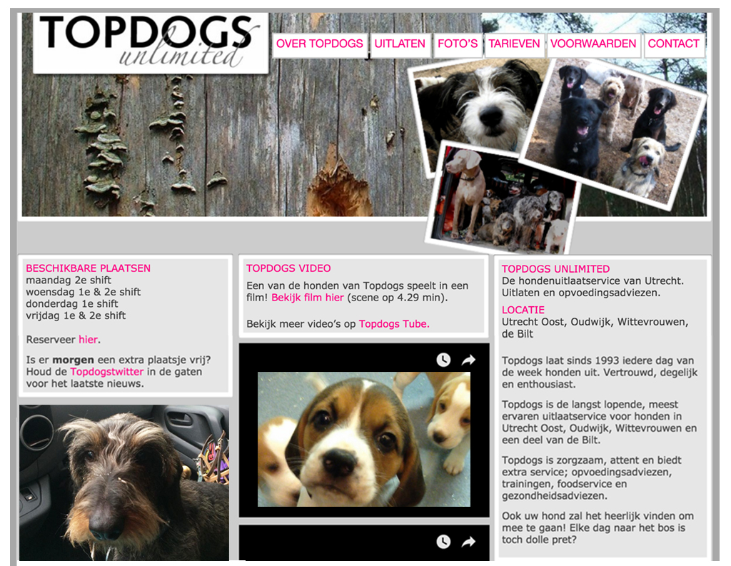 topdogs2